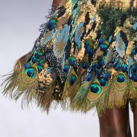 Peacock gold sequin dress