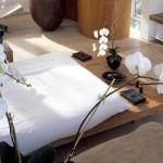 Zen bedroom with orchids and platform bed