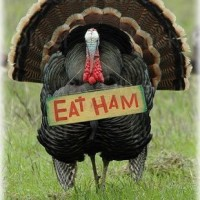 Turkey with eat ham sign
