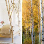 Artful Season's